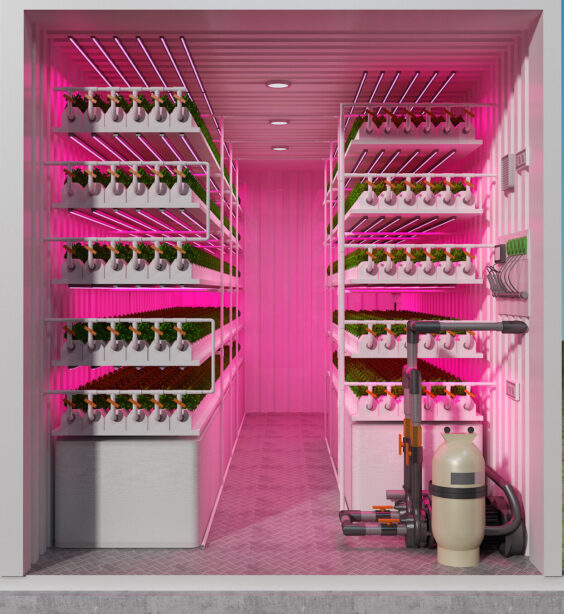 Inside shipping hydroponic container