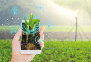 Agricultural automation, hydroponics