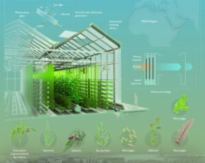 hydroponics, controlled agricultural environment