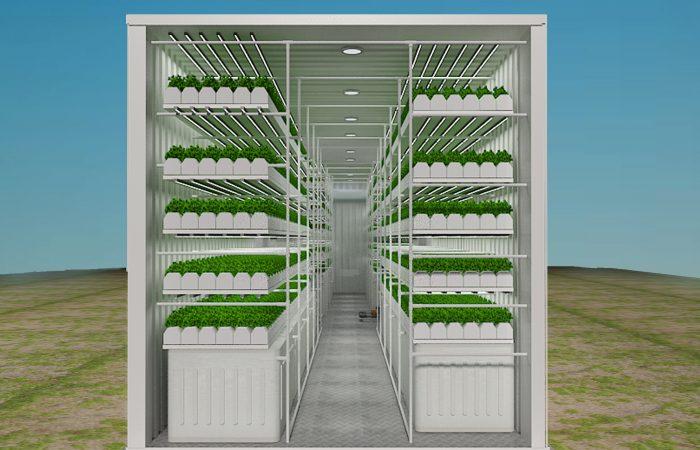 container farming, hydroponics